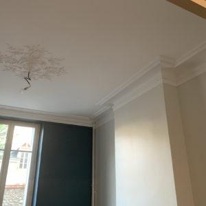 renovation peintre artisan piece a vivre peinture papier peint orleans (4)